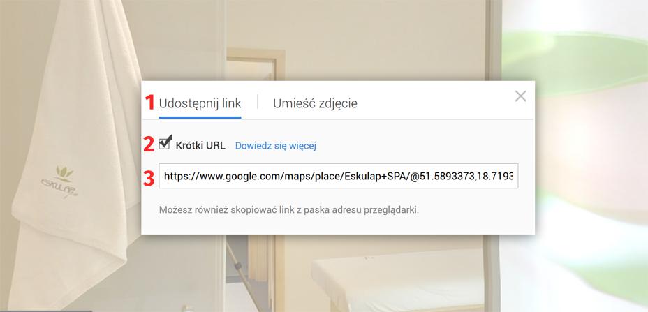 Wirtualny spacer Google - generowanie linku - krok 4